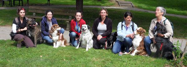 Les bénévoles en médiation animale