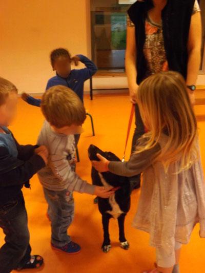 Apprendre à caresser un chien