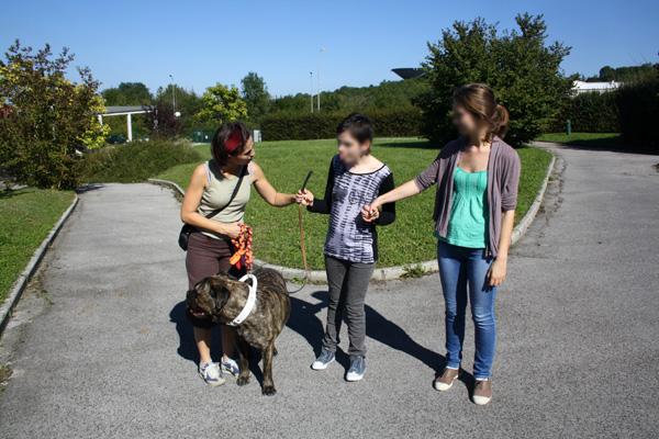Médiation aniamale avec un chien