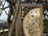 Cadre pour les insectes