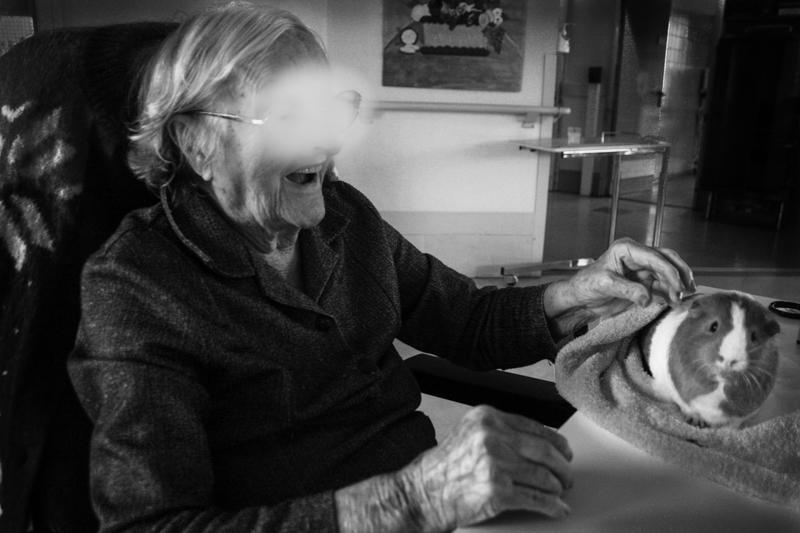 Médiation animale à l'hôpital par Cerise Griotte